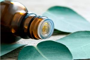 aceite_eucalipto